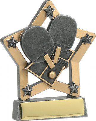 Badminton/Table Tennis